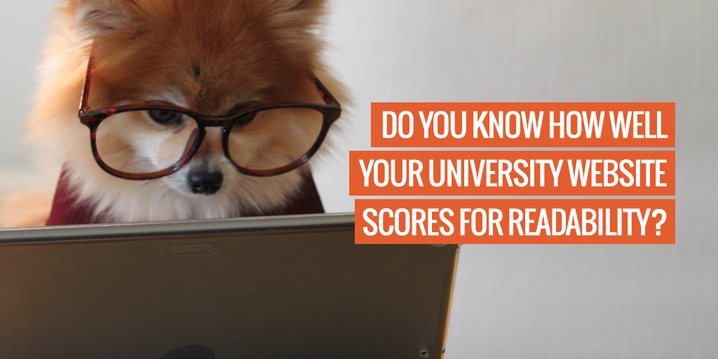 """An animal with reading glasses. Text reads """"Do you know how well your university website scores for readability?'"""