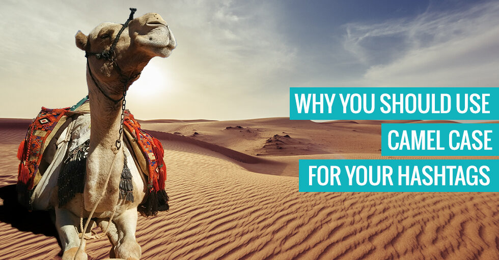 "A camel. Text reads ""Why you should use camel case for your hashtags"". you should use"