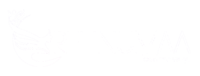 Rehnumaa