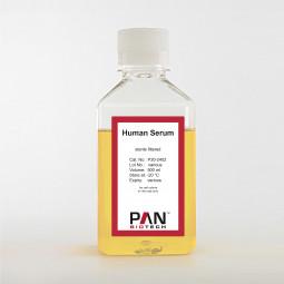 Human Serum