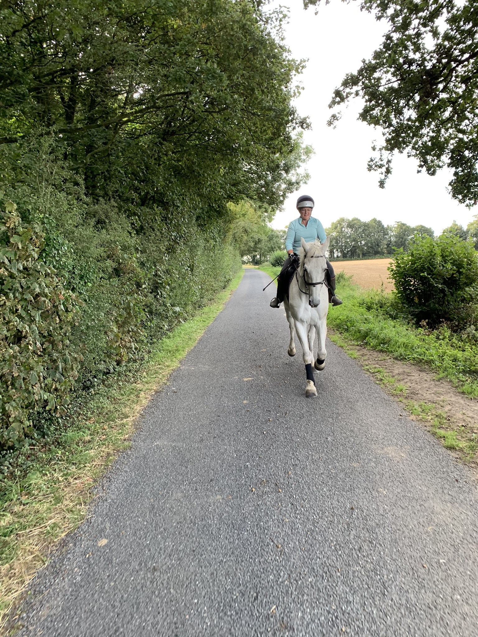 New Highway Code Rules – Protection for Horse Riders
