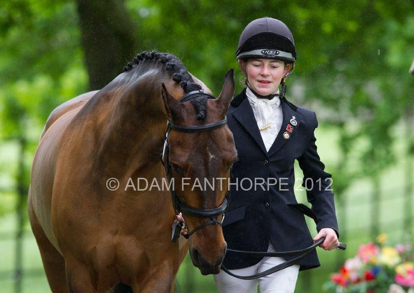 Should helmets be compulsory for trot ups / handling horses ?