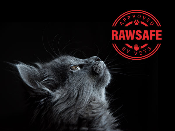 Raw-safe-join