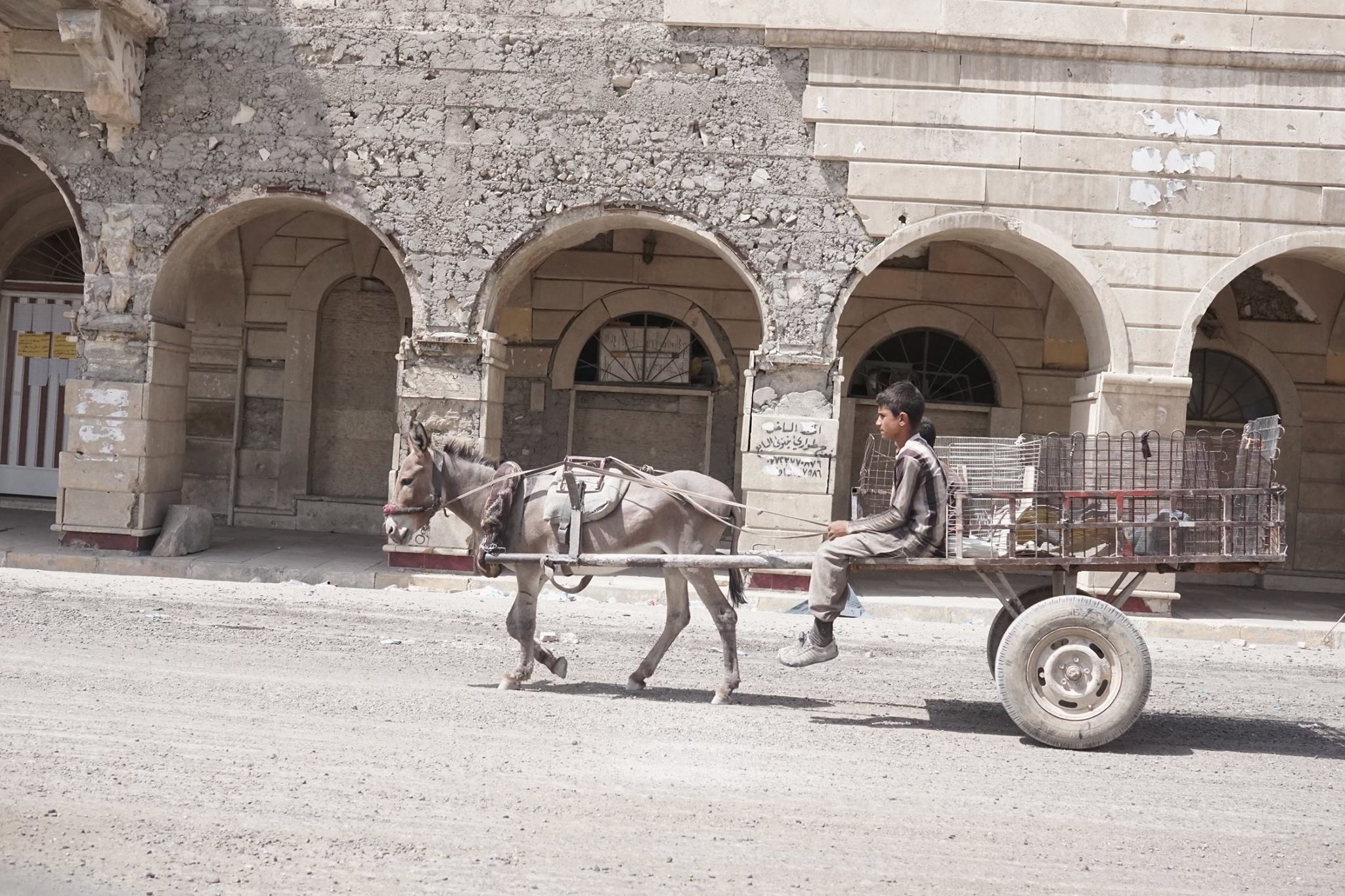 Catalystas observed boys making ends meet in the old city of mosul transporting good by donkey on once busy street of the former held ISIS territory