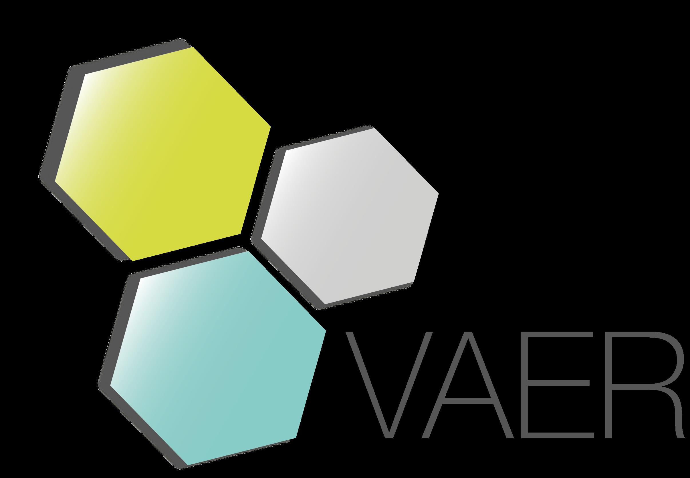 VAER logo (transparent)