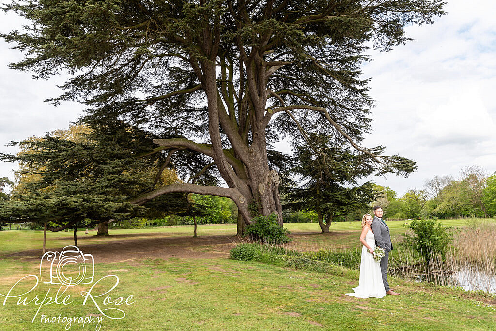 Bride and groom standing by a large tree