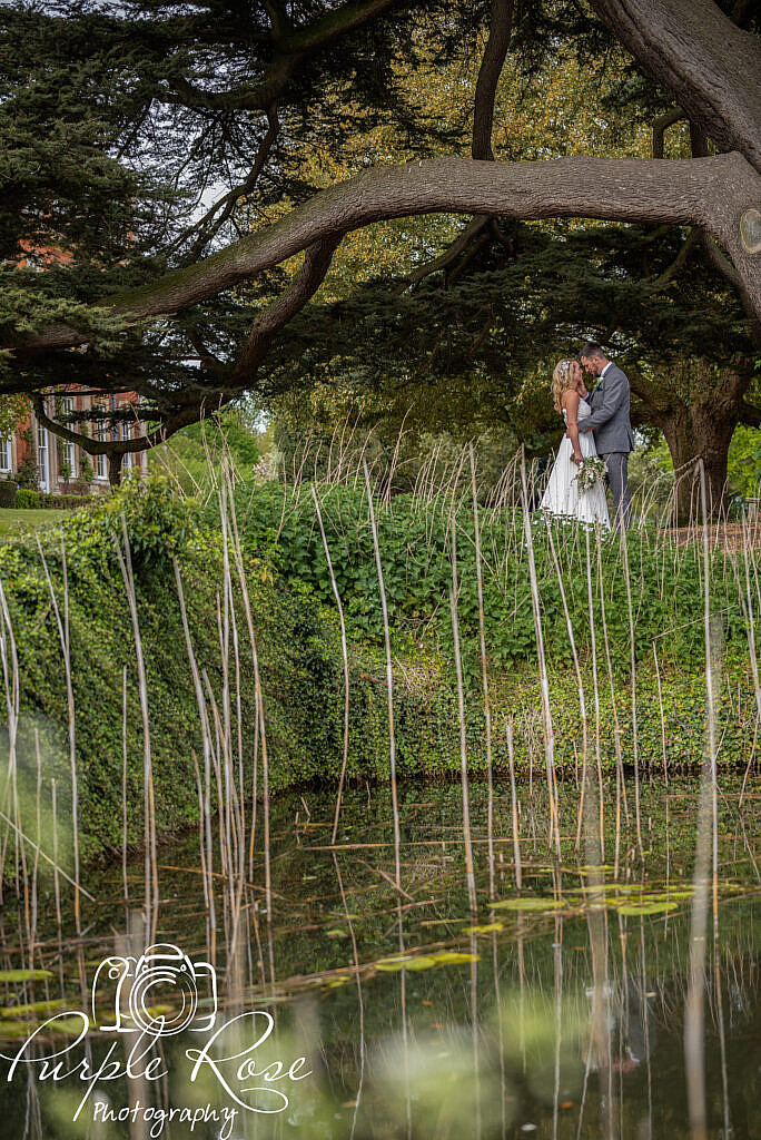 Bride and groom through reeds