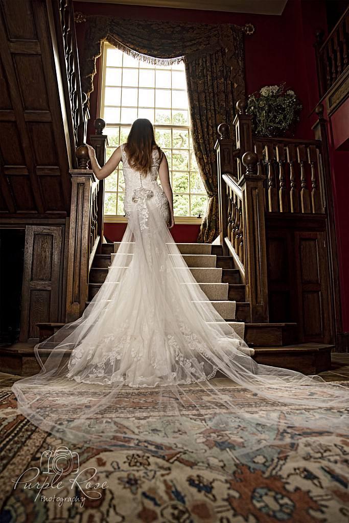 Back detail of brides dress