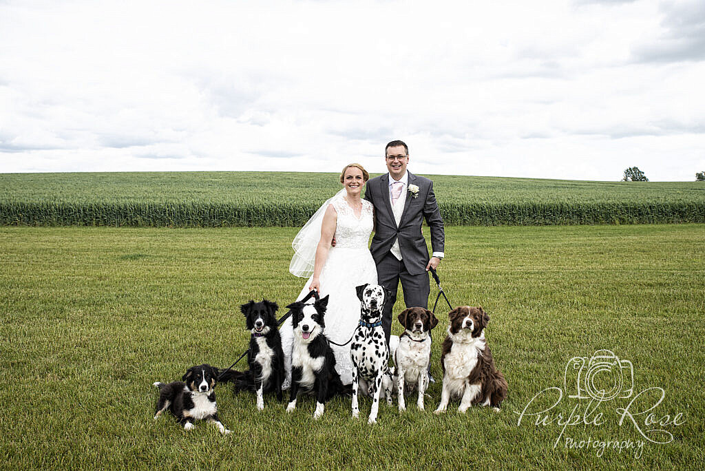 Bride and groom with their 6 dogs at their wedding