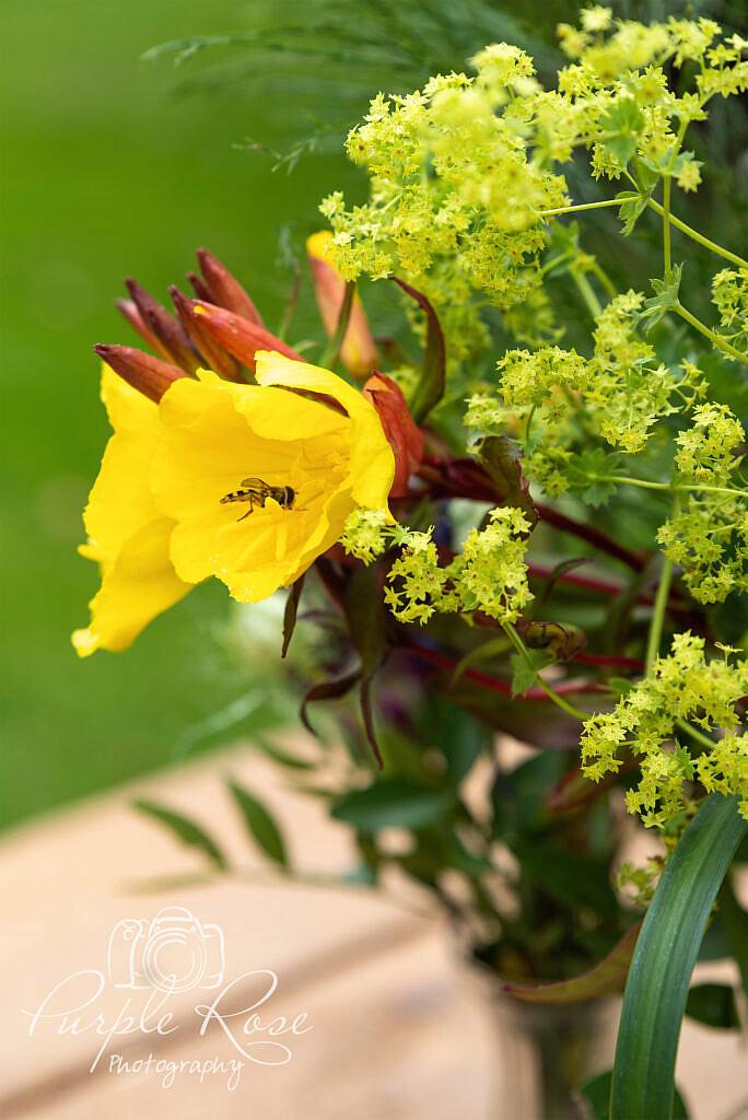 Bright yellow flowers