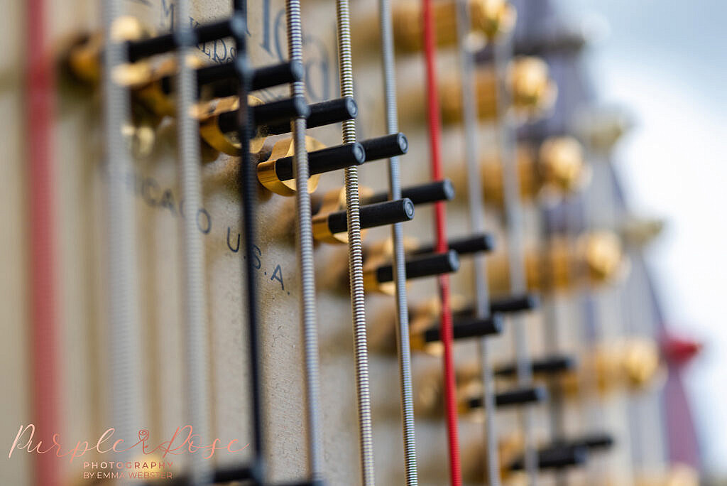details of a harps strings