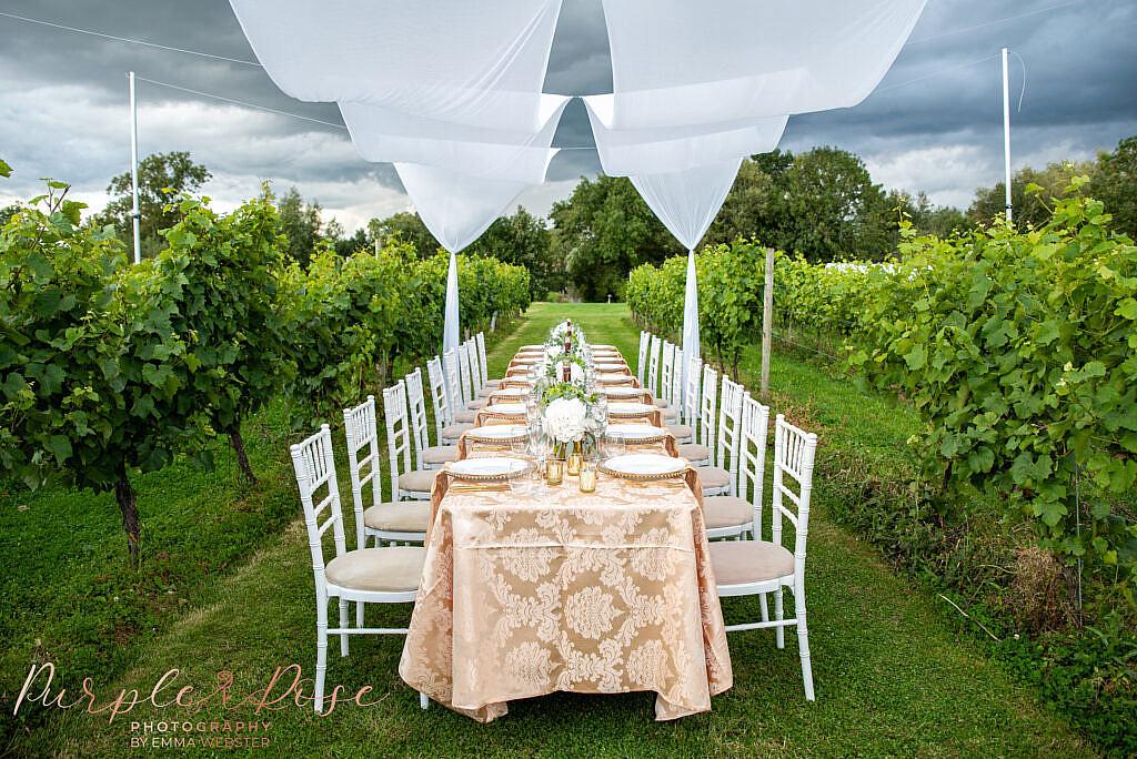 Wedding meal set up