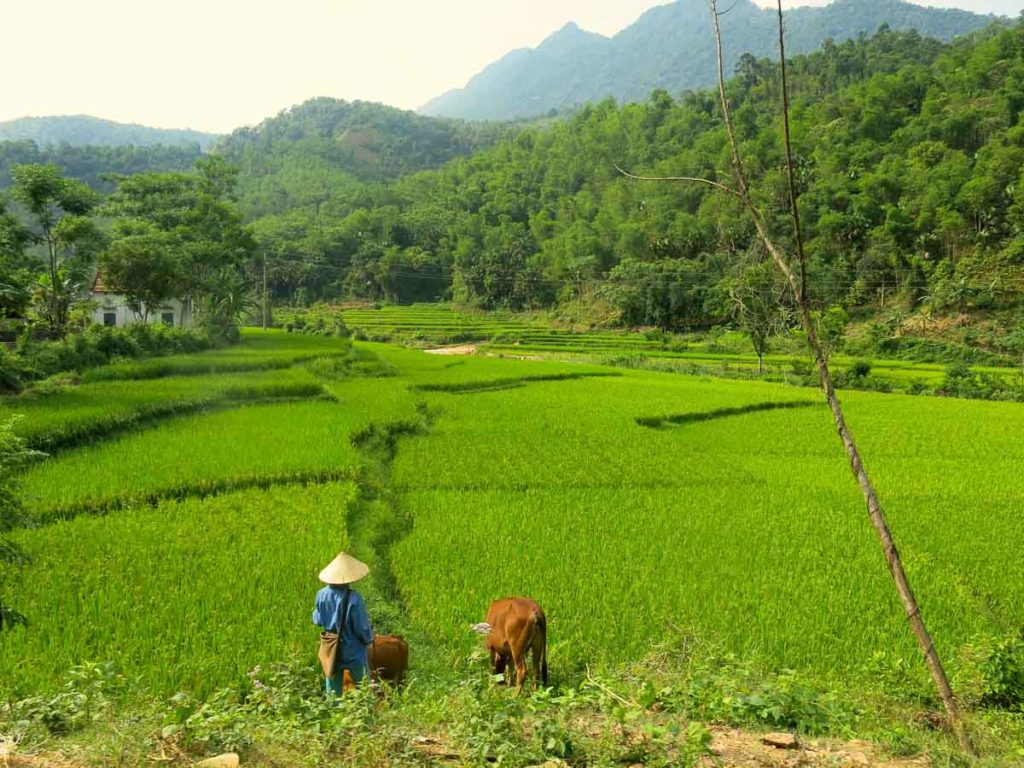 things to do in mai chau