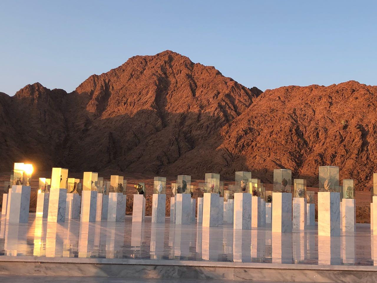 Exposition permanente dans le Sinaï2018