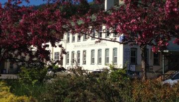 mvcc-trees-in-bloom
