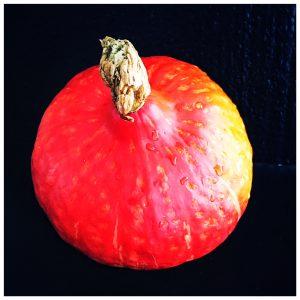 spaetzle, spaetzli, kuerbis, herbst, winter, wild, beilage, foodwerk.ch, foodblog, schweizer foodblogs