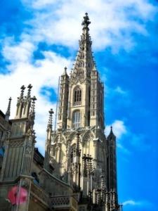 Berner Münster