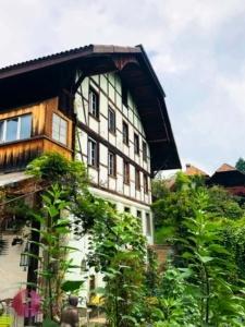 Cacis Mühle Haus