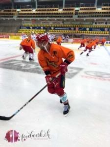 SCL Tigers auf dem Eis