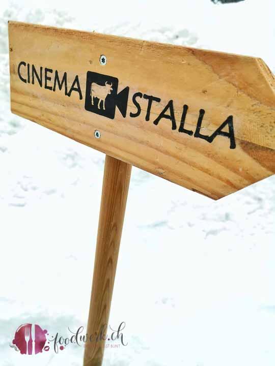 hier gehts zum cinema stalla