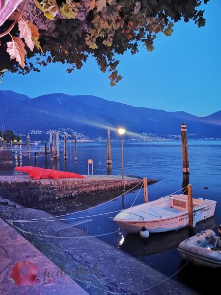 Hafen in ABendstimmung in Ascona