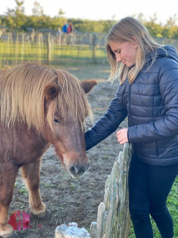 Pony Gut Huegle