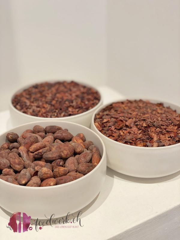 Kakaobohnen die Schritte bei der Herstellung