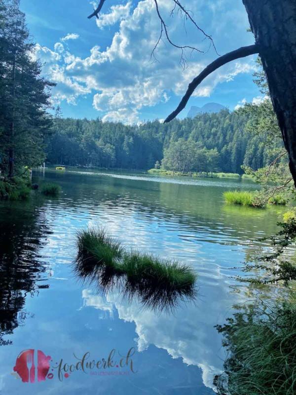 Möserer Waldsee mitten in Mösern