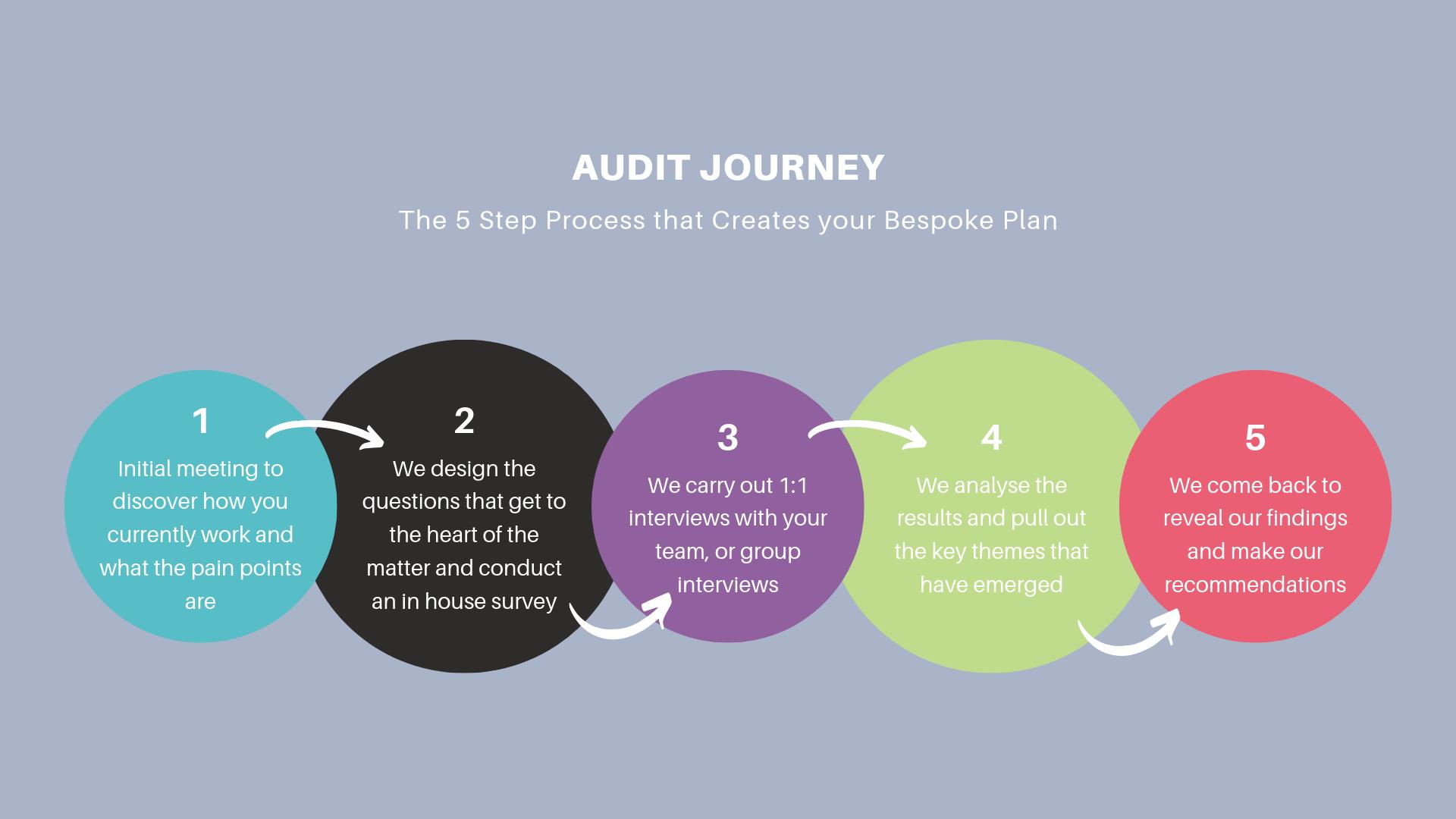 PUSH Audit process