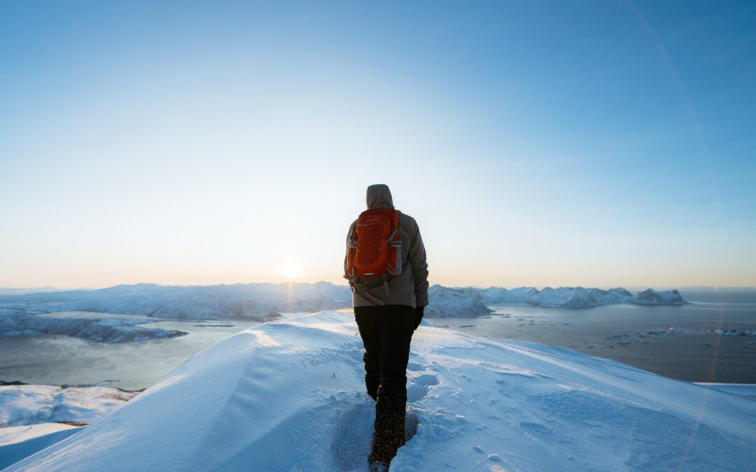 Combating COVID-19 with Resilience Inspired by 'Arctic' (film)