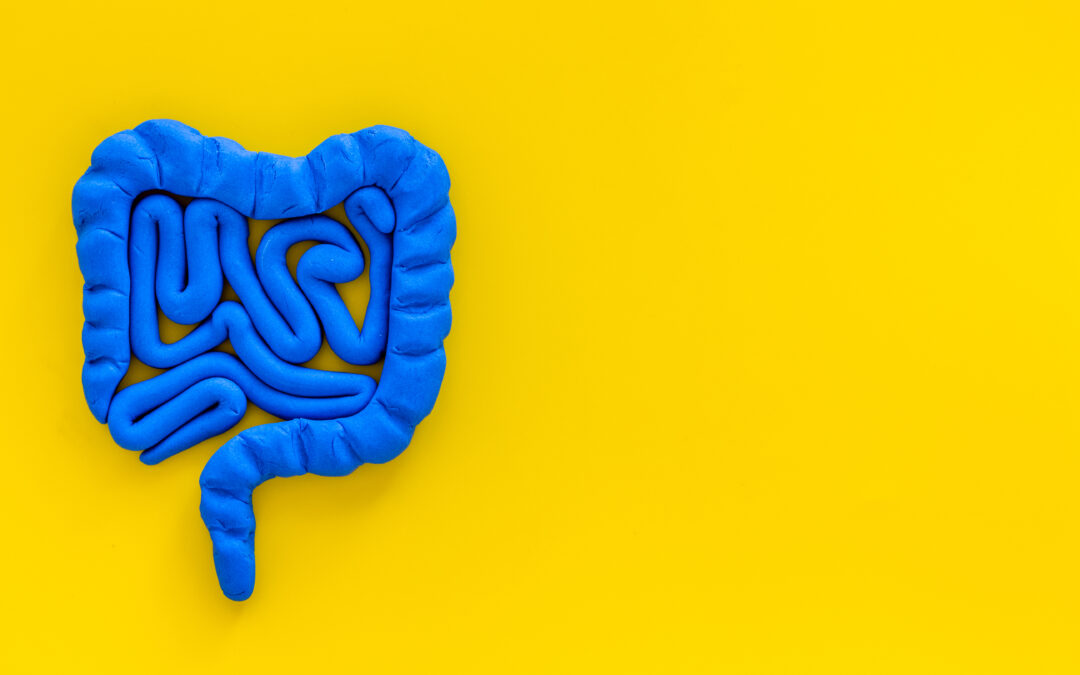 Leaky Gut: What is it?  What can I do to heal?