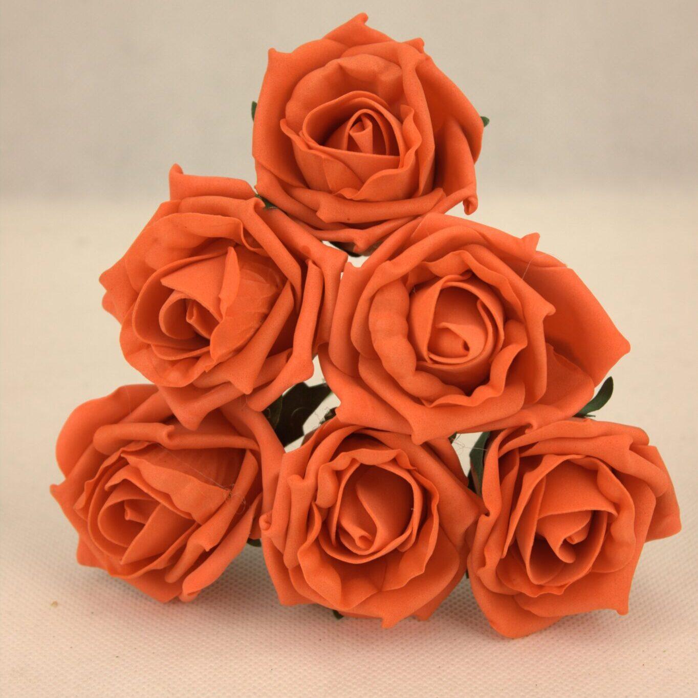 VG5 Oraneg