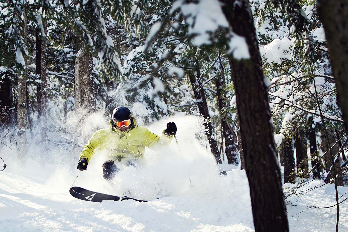 Aggressive Skier in the Woods