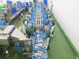 Image of Denholm Seafoods processing.