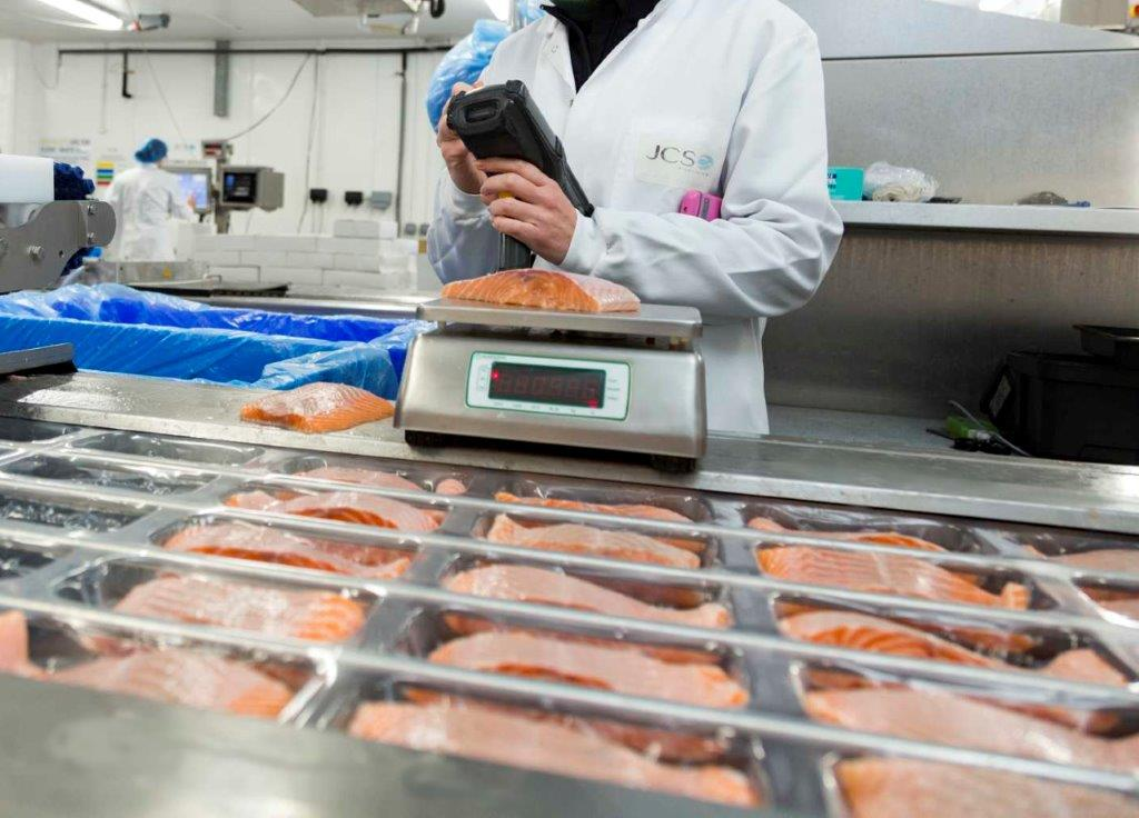 Image of salmon portions being weighed at JCS.