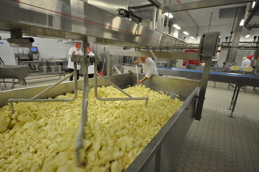 Image from SI onsite at SCC South Caernarfon Creameries cheese makers.