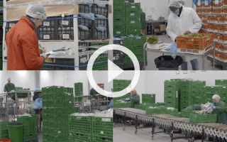 VIDEO: SI and R&G Herbs - SI saves us 56 hours a day