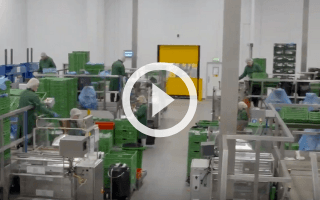 VIDEO: SI and R&G Herbs - real time visibility increases profitability