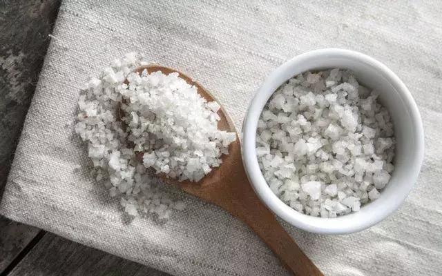 凱爾特海鹽 呈淺灰色濕鹽 功效多有益健康