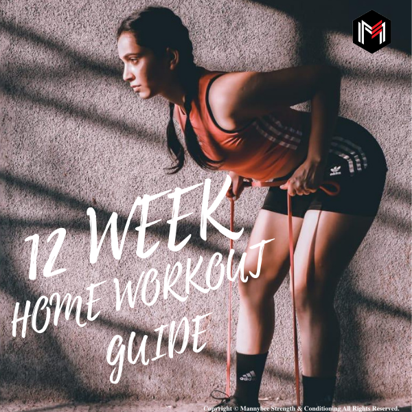 12 Week Home Workout Guide