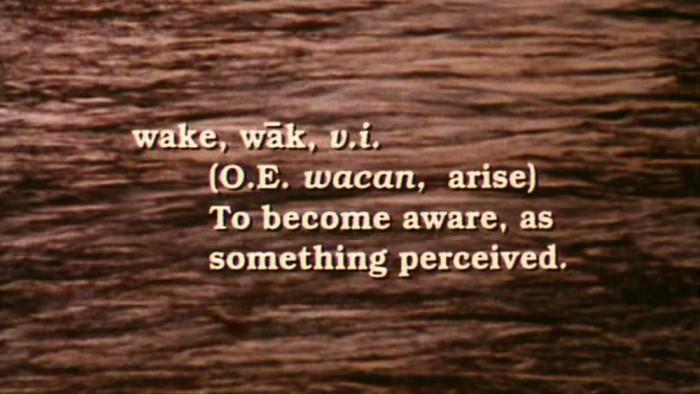 Wake, a film by Annie Goldson