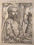 Andreas Vesalius Epitome and Fabrica