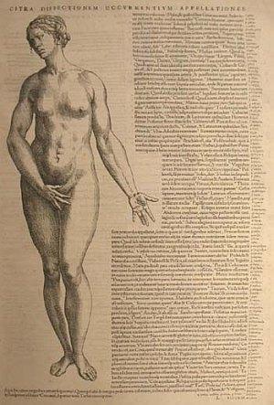 Vesalius Epitome female nude