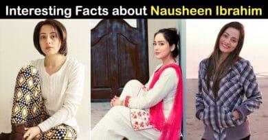 Nausheen Ibrahim biography