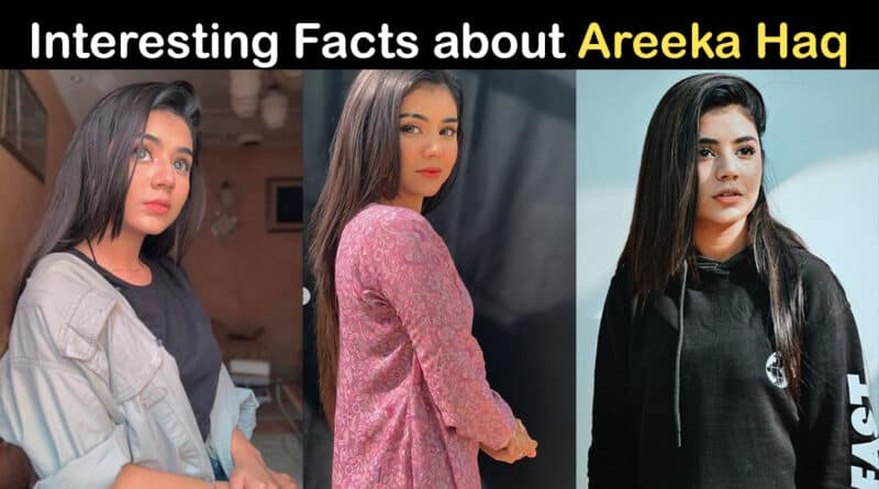 areeka haq biography
