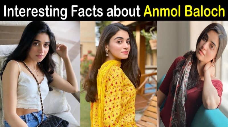 anmol baloch biography