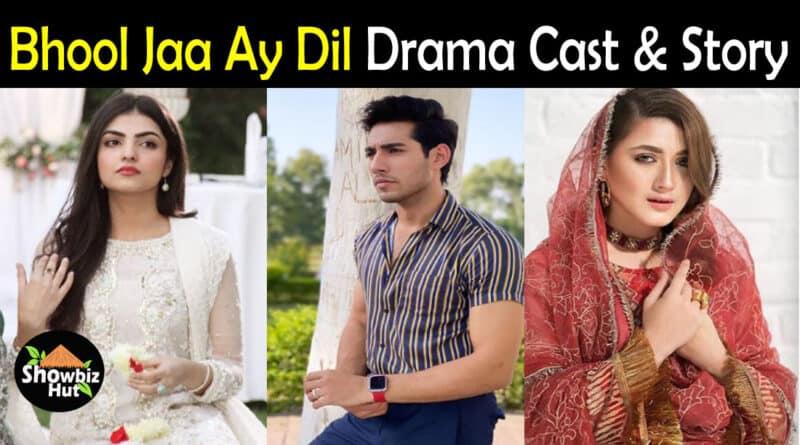 Bhool Jaa Ay Dil Drama Cast