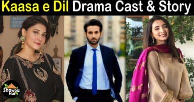 Kasa e Dil Drama Cast