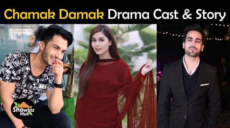 chamak damak hum tv drama cast