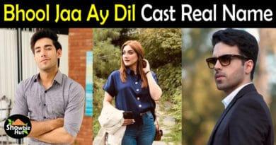 Bhool Jaa Ay Dil Drama Cast Name